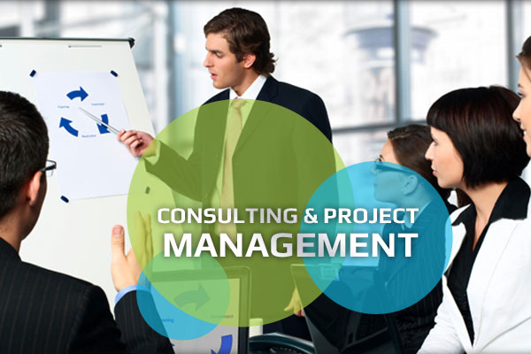 Online Advertising Consulting & Project Management Bay Area